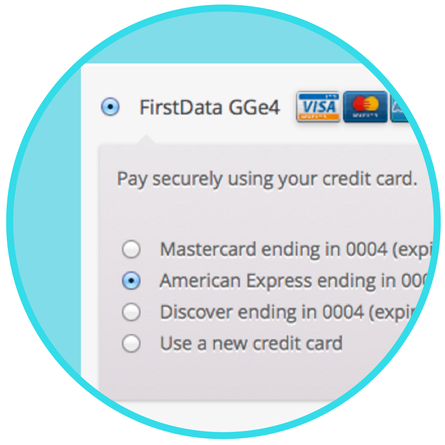 WooCommerce-First-Data-Payment-Gateway